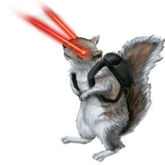 Laser_squirrel_hd